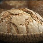 Seguros para Panaderías: las coberturas que debemos conocer